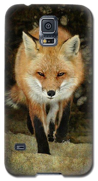 Island Beach Fox Galaxy S5 Case