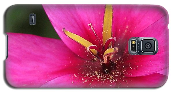 Galaxy S5 Case featuring the photograph Ixia Named Venus by J McCombie
