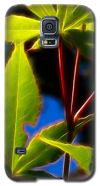 Japanese Maple Leaves Galaxy S5 Case by Judi Bagwell