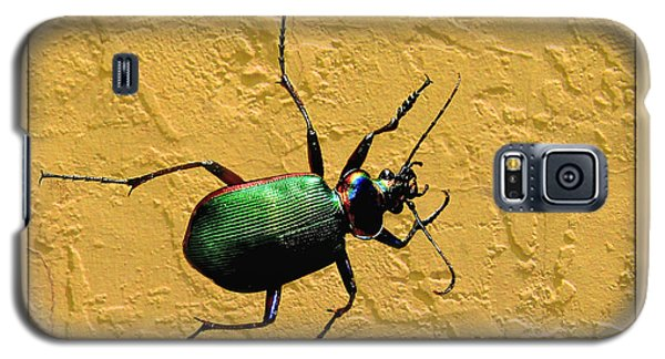 Galaxy S5 Case featuring the photograph Jeweltone Beetle by Debbie Portwood