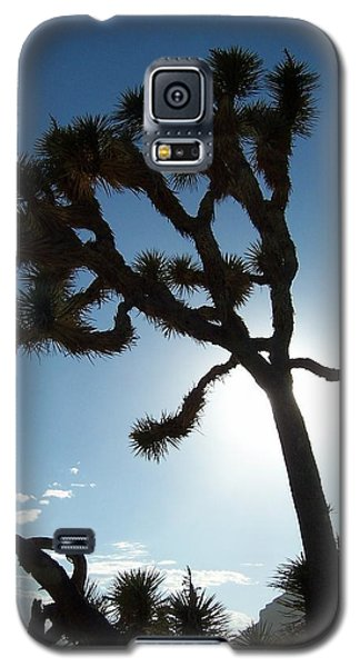 Galaxy S5 Case featuring the photograph Joshua Tree by Peter Mooyman