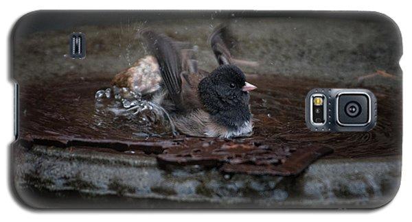 Galaxy S5 Case featuring the digital art Junco In The Birdbath by Carol Ailles
