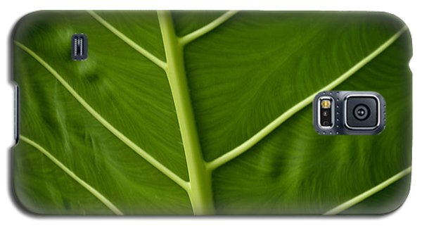 Jungle Leaf Galaxy S5 Case