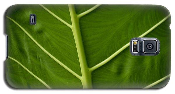 Jungle Leaf Galaxy S5 Case
