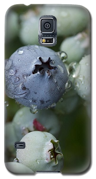 Just Blue Galaxy S5 Case by Carrie Cranwill