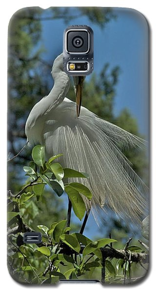 Galaxy S5 Case featuring the photograph Just So by Joseph Yarbrough