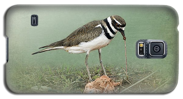 Killdeer And Worm Galaxy S5 Case by Betty LaRue