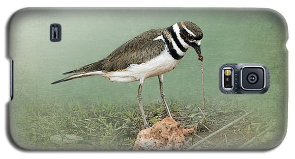 Killdeer And Worm Galaxy S5 Case