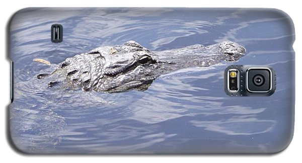 King Of The Everglades Galaxy S5 Case