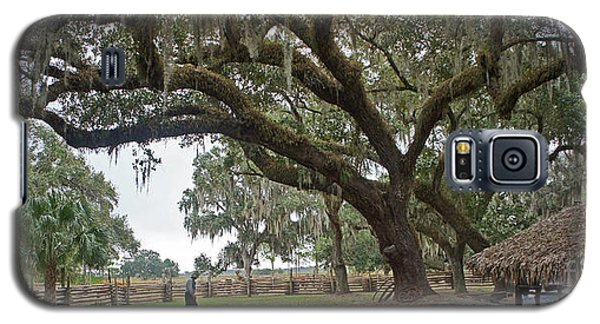 Galaxy S5 Case featuring the photograph Kissimmee Cow Camp 4 by Larry Nieland