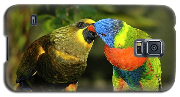 Kissing Birds Galaxy S5 Case