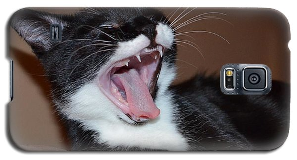 Galaxy S5 Case featuring the photograph Kitten Yawns by Melissa Goodrich