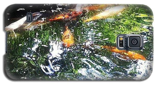 School Galaxy S5 Case - #koi #pond #water #nishikigoi #carp by Victor Wong