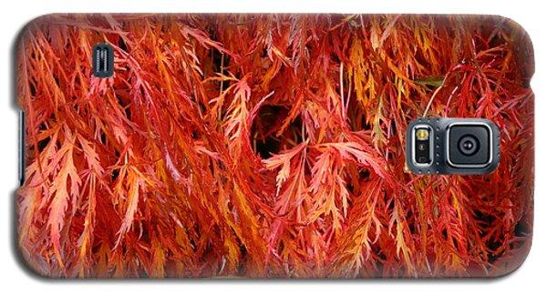 Laceleaf Fire Galaxy S5 Case