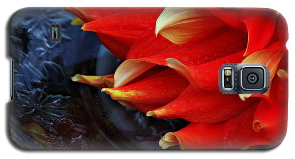 Galaxy S5 Case featuring the photograph Lady In Red by Jeanette C Landstrom