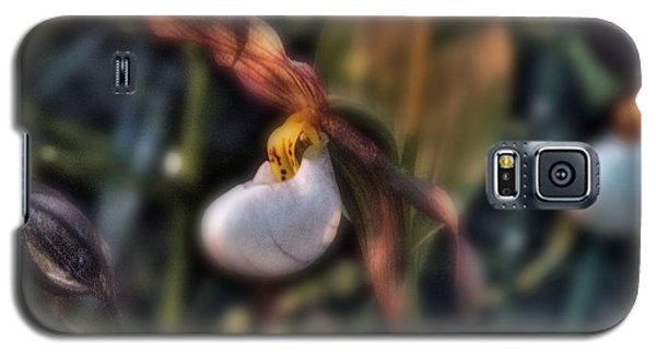 Galaxy S5 Case featuring the photograph Lady Slipper1 by Janie Johnson