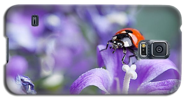Beetle Galaxy S5 Case - Ladybug And Bellflowers by Nailia Schwarz