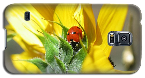 Galaxy S5 Case featuring the photograph Ladybug by Mitch Shindelbower