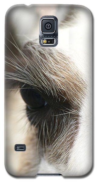 Lama Galaxy S5 Case