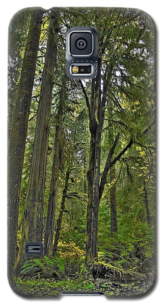 Land Of The Umpqua Galaxy S5 Case