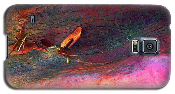 Galaxy S5 Case featuring the digital art Landing by Richard Laeton