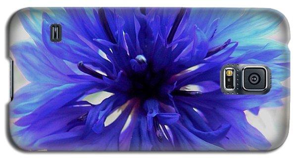 Lapis Lazuli Galaxy S5 Case