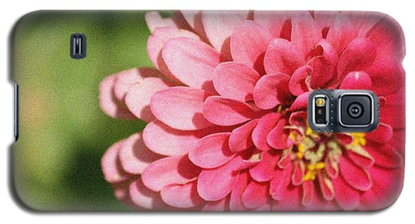 Galaxy S5 Case featuring the photograph Large Pink Zinnia by Donna  Smith