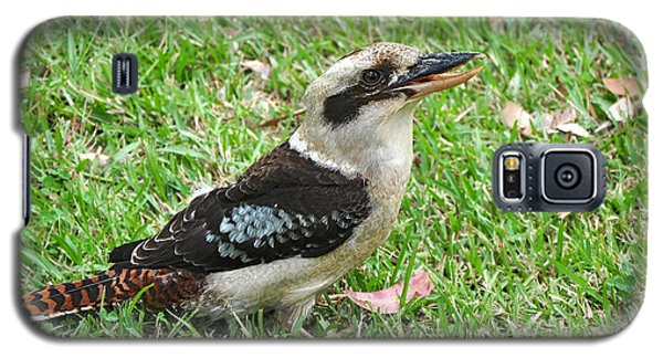 Laughing Kookaburra Galaxy S5 Case by Kaye Menner