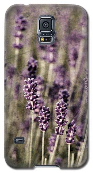 Lavender Field Galaxy S5 Case by Laura Melis