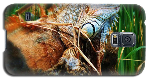 Lazy Lizard Lounging Galaxy S5 Case