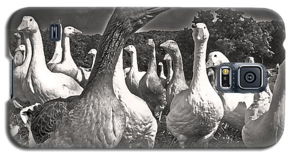 Galaxy S5 Case featuring the photograph Leader Of The Pack by William Fields