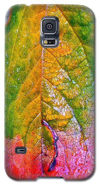 Galaxy S5 Case featuring the photograph Leaf 2 by Bill Owen