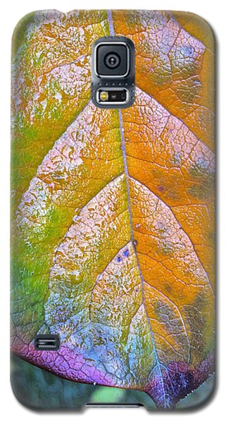Galaxy S5 Case featuring the photograph Leaf by Bill Owen