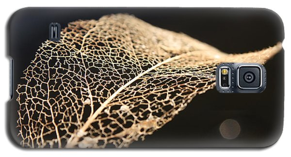 Galaxy S5 Case featuring the photograph Leaf Skeleton by Cathie Douglas