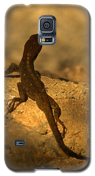 Leapin' Lizards Galaxy S5 Case by Trish Tritz