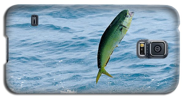 Galaxy S5 Case featuring the photograph Leaping Mahi by Bradford Martin