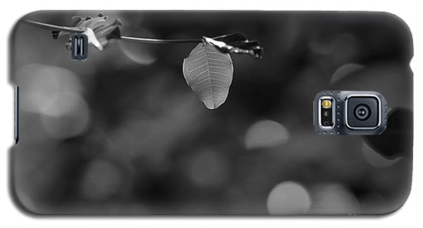Leaves And Light Galaxy S5 Case by Dariusz Gudowicz