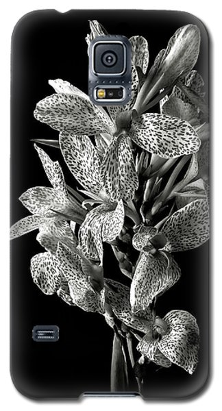 Leopard Lily In Black And White Galaxy S5 Case