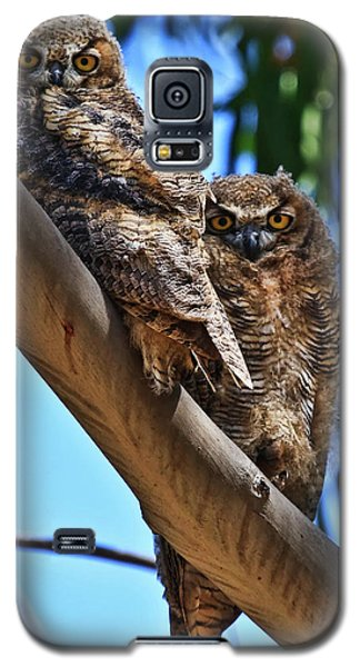 Lifes A Hoot Galaxy S5 Case