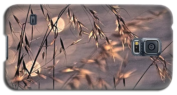 Light Bubbles And Grass 2 Galaxy S5 Case by Jocelyn Kahawai