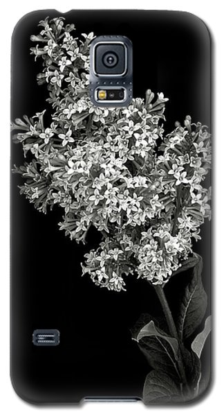 Lilac In Black And White Galaxy S5 Case