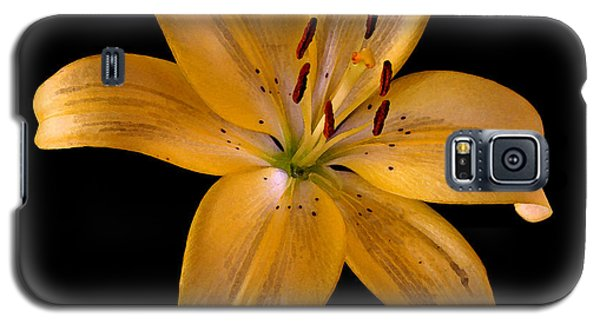 Galaxy S5 Case featuring the photograph Lily by Karen Harrison