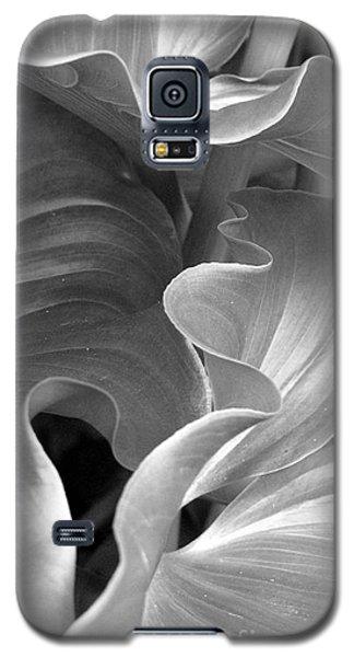 Contours Galaxy S5 Case