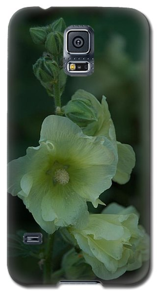 Galaxy S5 Case featuring the photograph Lime by Joseph Yarbrough