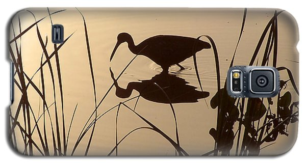 Limpkin At Dawn Galaxy S5 Case