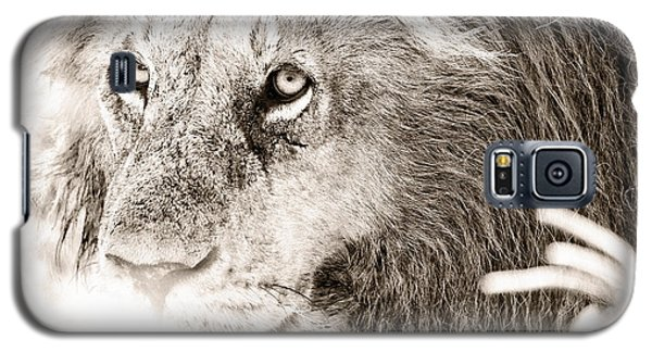 Lion In Concentration Galaxy S5 Case
