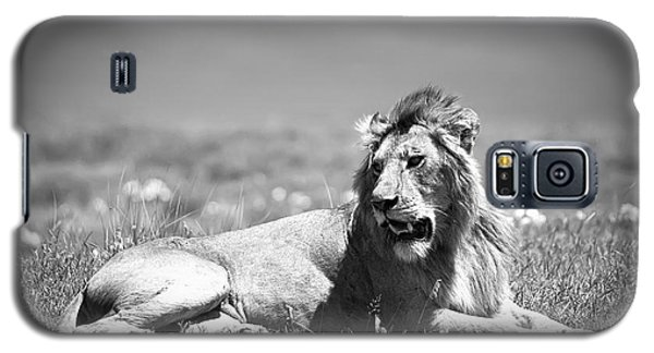 Lion Galaxy S5 Case - Lion King In Black And White by Sebastian Musial