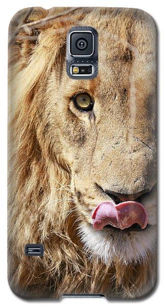 Lion Lunch Galaxy S5 Case