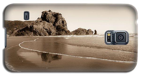 Lion Rock Galaxy S5 Case