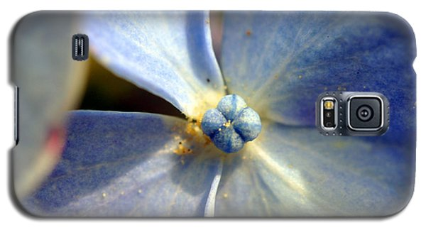 Galaxy S5 Case featuring the photograph Little Blue Flower by Kay Lovingood